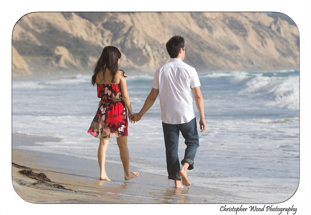 Torrey Pines Engagement Beach