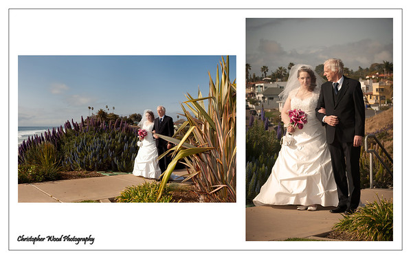 Moonlight Beach Wedding