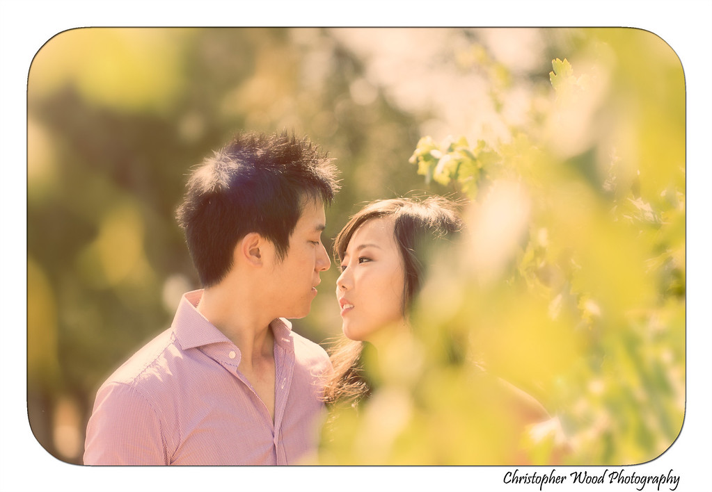 vineyard kiss portrait